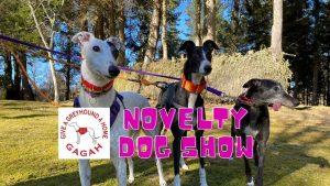 Speysound at Novelty Dog Show Fundraiser